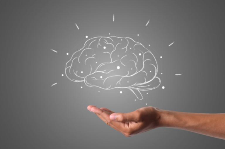 Accompagnement neuropsychologique / remédiation cognitive (rééducation)